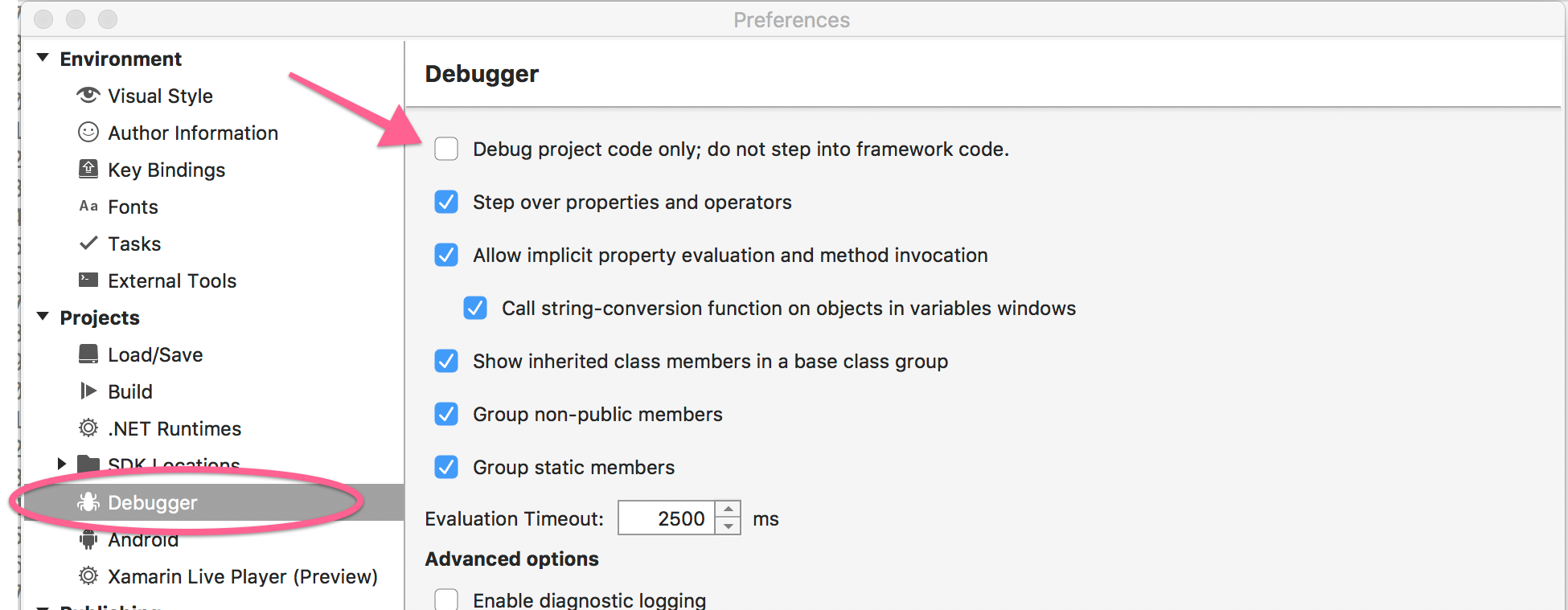 Debugger settings